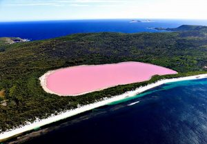 This pink lake comprises an integral part of weird google earth
