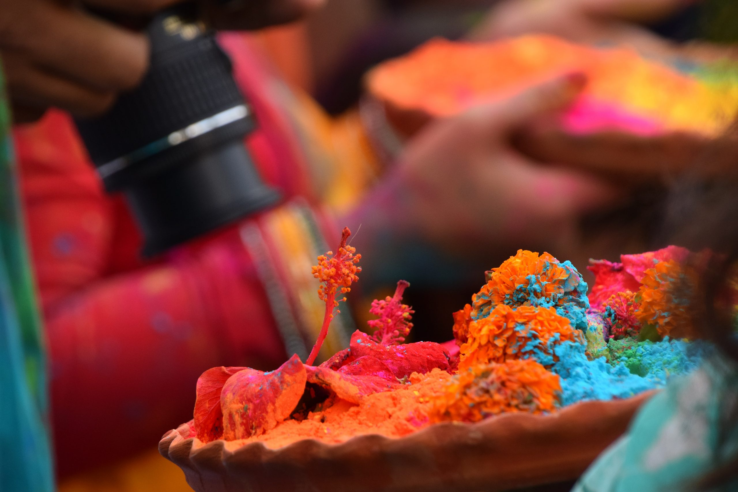 how to have organic holi
