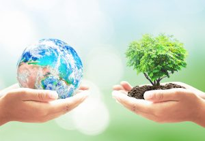 How are Earth Day and Environment Day different