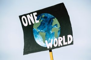 Why is Environment Day Celebrated